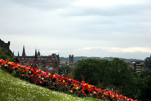 Flowers in Edinburgh