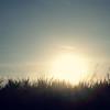 (Syka Lê Vy) Tags: trees light sky sun smile waiting sunny sugar vietnam vy dreamer 2009 sunnyday sleepwalker lê keepsmiling syka vắng mydaywillcome fromsykawithlove daysstillgoon sykalevy lehoangvy sundayspirit