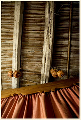 cane roof (Φ-Filippos-Κ) Tags: wood roof cane traditional curtain cyprus pomegranates cipro kypros kipr στέγη παλιό καλάμια κουρτίνα κύπροσ κανιά ξύλινο ρόδια ταβάνι βολίτζι δοκάρι
