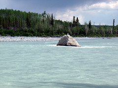 Tazlina River (goflight001) Tags: alaska river silt richardsonhighway rockflour tazlinariver