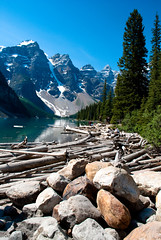 at the edge of moraine lake (raspberrytart) Tags: blue mountain lake canada water rocks logs alberta banffnationalpark morainelake lakemoraine d80