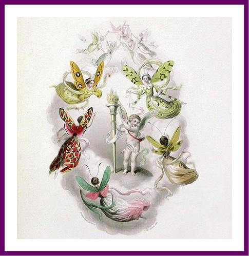 005--Les Papillons, métamorphoses terrestres des peuples de l'air- Pierre Amédée Varin