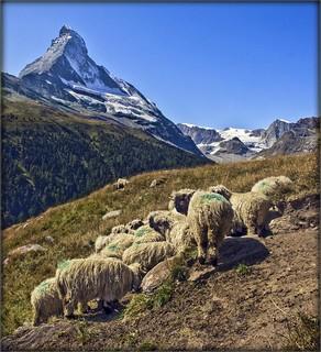 Switzerland The Matterhorn /
