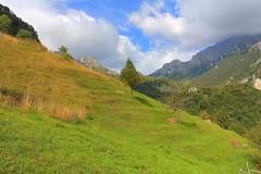 Verso lo Zucco Sileggio - HDR (* Vly *) Tags: montagne nuvole monte prato montagna hdr mandellodellario zucco scosceso sileggio