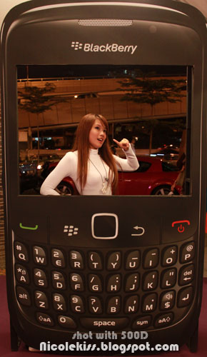 blackberry phone cardboard