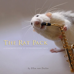 The Rat Pack (picturiapress) Tags: cats pets children photography artwork artist photographer photos designer photobook mice rats picturebook bookdesign petphotography giftbook connolly bookdesigner childrensbook picturia picturiapress bookdesigning ellenvandeelen