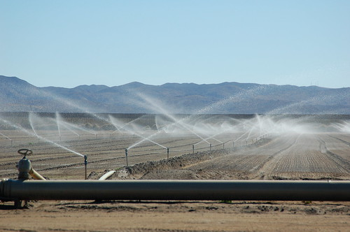 Sprinklers irrigate a desert farm near San Diego.