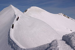 A l'aresta (Alps) (gus el gamarús) Tags: white mountain snow alps nature alpes trekking landscape climb natura glacier muntanya neu paisatge alpinism