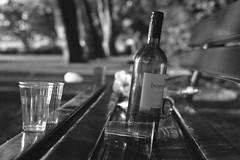 ghosts of saturday night vi/viii (The Cassandra Project) Tags: bw film monochrome trash 35mm vintage bench schweiz switzerland bottle junk suiza swiss luzern tokina litter diafine sw ghosts detritus expired svizzera littering sundaymorning lucerne mll apx flasche glas vierwaldstttersee gegenlicht abfall morgensonne nikonf90x lakelucerne sveitsi agfaapx100 sitzbank rolleiretro100 kleinbild inseli inselipark tokinaatxpro2870