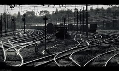 Freight yards (Le***Refs *PHOTOGRAPHIE*) Tags: yards light bw white black reflection nikon railway nb reflet rails depot fret nimes freight sncf lerefs