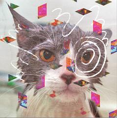 Friday Feelio (34) (Willbryantplz) Tags: mix triangle geometry shapes kitty mum doodle cover animalcollective shape sigurros sparklehorse porchofthemystics fridayfeel neonindian