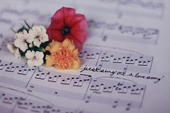 Just Sing Me A Love Song ({peace&love}) Tags: flowers red music white cute love yellow writing dof notes bokeh piano beethoven sheets moonlight cursive sonata pinkparis1233