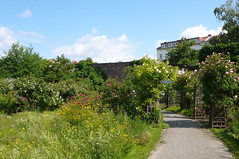 Comenius-Garten 2