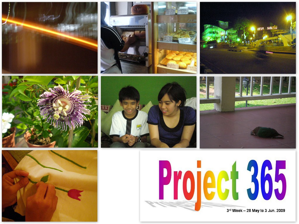 project 365 — 3rd week