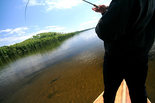 Fly fishing for northern pike in Canada 2009
