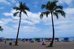 bh 006 (Jan Crites) Tags: hawaii oahu pacificocean waikikibeach