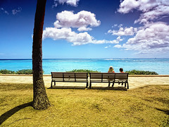 Taking in the View (/\ltus) Tags: beach bench lumix hawaii waikiki panasonic honolulu nothdr dmcfx35 chizukotookthisone