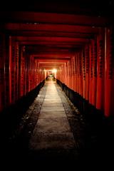 Fushimi Inari Shrine (jauderho) Tags: original japan canon kyoto   5d torii  2007 fushimi  1635mm fushimiinarishrine tlog jauderho japan2007