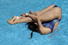 Wu Minxia (gongolo) Tags: roma cina tuffo tuffi wuminxia 13thfinaworldchampionships mondialidinuotofinaroma09 womens1mspringgboard finalefemminiletrampolino1metro