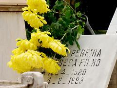 Pereira Filho