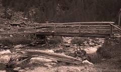 Malga pra del Saent (Dr. Maus) Tags: italy alberi italia ponte rabbi tronco montagna rabies trentino alpe torrente malga saent