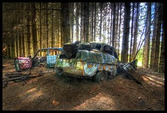 Into the Woods (♥ Damona-Art •.¸¸.•´¯`•.♥.•´¯`) Tags: light urban cars abandoned forest lost photography woods nikon 60s raw belgique decay secret ardennes rusty sigma wideangle explore vandalism 50s exploration forests hdr urbex d300 carcemetery sigma1020