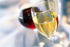 XXI Edición Cata de vinos San Juan