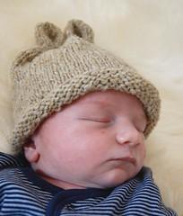 ('nise) Tags: arthur knitting babyhat artie