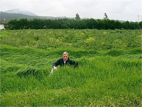 ecuador-farming