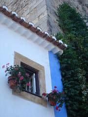 window @ bidos (patricia caetano jorge) Tags: window village historic bidos