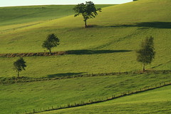 Countryside...Evening in the Hills (rolfspicture) Tags: trees countryside shadows farmland greenhills gmt sauerland aplusphoto