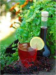 Holunderbeerensirup | Elderberry Syrup (Soupflower's Blog) Tags: recipe blog lemon berry syrup beeren saft zitrone holunder holunderbeeren sirup rezept soupflower hollersaft wwwsoupflowercomblog kochblog holunderbeerensaft