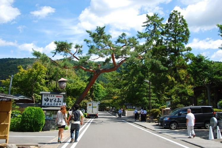 京都-0312-1
