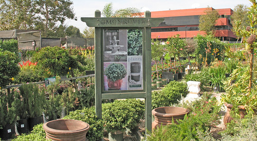 monrovia growers and plants
