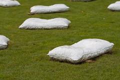Pillows (TylerIngram) Tags: art vancouver artists coalharbour