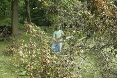 _MG_6464.JPG (zimbablade) Tags: trees sleepyhollow dougmiller videopoem