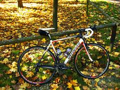 leisure time-ride (Bikeadelic / Marcello) Tags: road bike bicycle race cycling super record bici pro carbon marcello fahrrad fsa roadbike specialized bicicletta anni campagnolo 11s rennrad campa superrecord fizik roadracing carbonbike fulcrum racing3 specializedtarmacpro specializedfact10rcarbon fulcrumracing3black