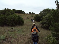 Hiking on the top of the ridge by Camp Classen
