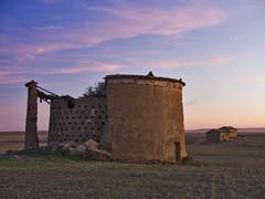 Palomar en Boada de Campos-Palencia (roberaten) Tags: palomar palencia tierradecampos boadadecampos