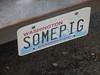 Some Pig (daniel.mcg) Tags: car truck porcine pig seattle food diner pigtruck somepig