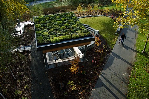 Skyway Park green roof shelter