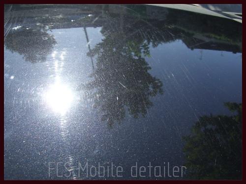 Seat Ibiza 2004 negro mágico-022