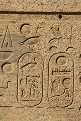 Cartouche, seemingly of Thutmosis III (p medved) Tags: temple egypt egipto karnak luxor gypten templo egitto hieroglyphics egypte egito tempel egypten templom tempio tapnak hram egipt misr misir hieroglyphen chrm tempelj geroglifici hierglifos jeroglficos templu egipat hieroglyfer egyptus hijeroglifi
