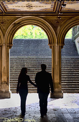 Central Park Engagement - New York City (DiGitALGoLD) Tags: park new york bridge shadow portrait love stairs engagement nikon central romance nikkor f28 d3 2470mm