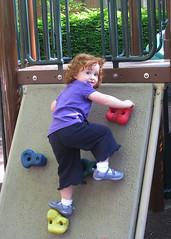Speck climbs a playground climbing wall