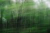 different trains (nosha) Tags: usa train newjersey nj lightroom oceangrove 50mmf18 2011 nosha nikond300 blartsy