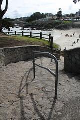 IMG_2984 (mudsharkalex) Tags: california pacificgrove pacificgroveca loverspointpark loverspointbeach