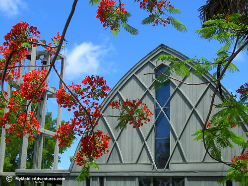 IMG_0580-royal-poinciana-sanibel-church