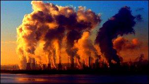Sectores industriales que tienen un alto impacto en la biodiversidad
