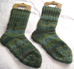 nature walk socks 005